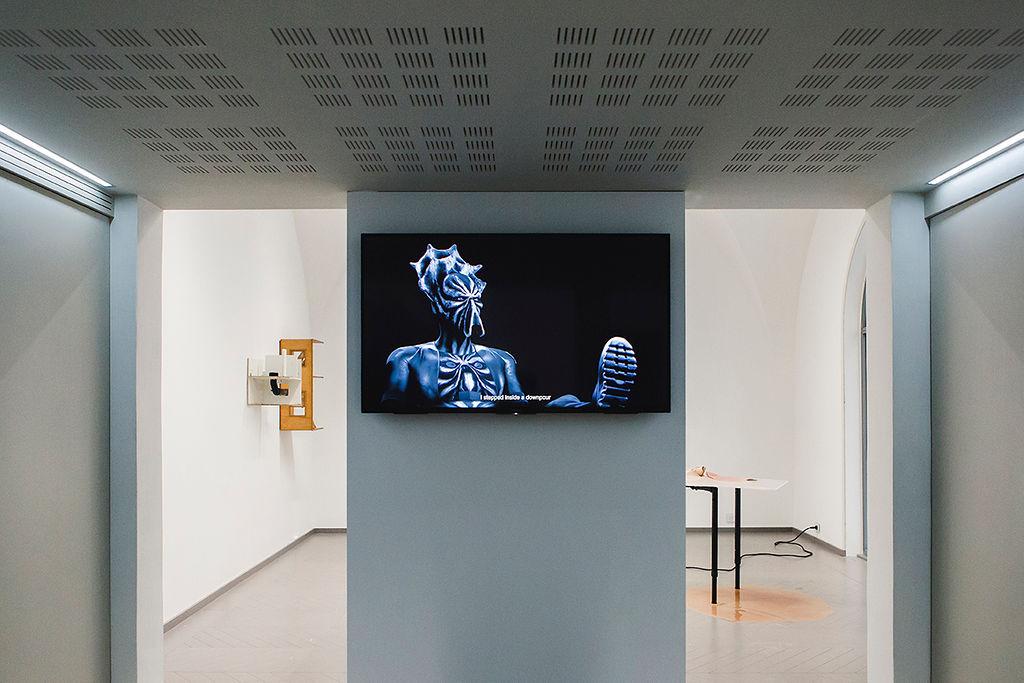 7. Will Benedict, I AM A PROBLEM, 2016, Aube immédiate, vents tièdes, vue d'exposition, Mécènes du Sud Montpellier-Sète, 2019, image: Elise Ortiou Campion