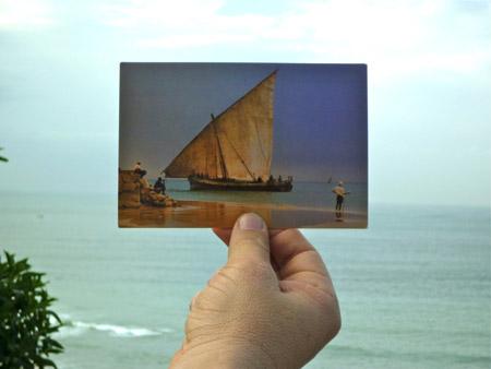 Installation de Sisygambis au Maroc