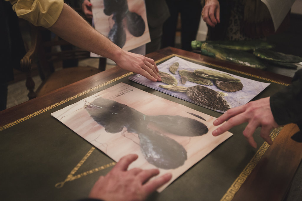 Posters d'Hadrien Gérenton présentés pendant la Soirée Coup de Coeur
